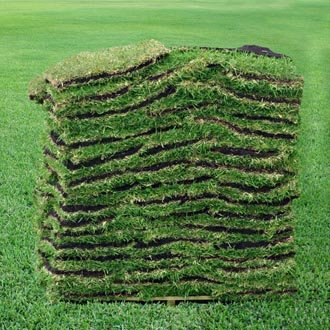 Sod (supply and installation)